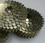 De gegalvaniseerde die Kopnagel van de Spijkers van de Draad van het Dakwerk, Het Netwerk van de Draad, Spijker in China wordt gemaakt
