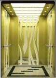 La trazione Gearless Vvvf guida a casa l'elevatore della villa (RLS-241)
