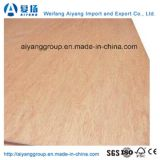 Madera contrachapada comercial/madera contrachapada de lujo para los muebles de la fábrica de Weifang
