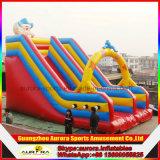 Dia van de Clown van het circus de Opblaasbare Droge voor Volwassene en Kinderen met het Beklimmen van Berg
