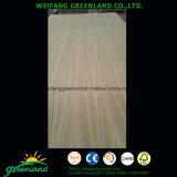 Sapele Film Plywood/Cherry Plywood/Maple Plywood/Oak Plywood/Walnut Plywood/Artificial Veneer Plywoood