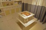 جديدة باريس أسلوب [سليد ووود] منزل أثاث لازم لأنّ يعيش غرفة/[ستثدي رووم]/غرفة نوم