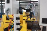 Máquina de estaca do plasma do CNC do pórtico com estaca de gás