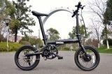 36V 5 속도 원조 Foldable 리튬 전기 자전거 (16F01)