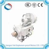 Yzbp Dreiphasen-Wechselstrom-variabler Frequenz-Motor für Ölfeld-Bohrung