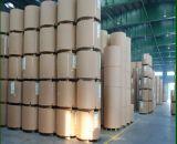 Panneau en ivoire Produit-Mécanique latéral simple de la pulpe 350GSM