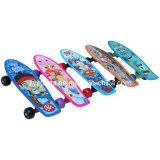 1705 het Skateboard van de Poney van kinderen (zy-1705 J)