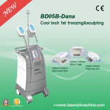 Régime de gel de traitement de Bd05b 2 gros/machine perte de poids de Cryolipolysis