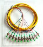 Coleta óptica de fibra del SM (conectador FC/APC 0.9m m de los Multi-corazones 12 corazones)