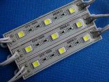 5054 Ce de epoxy RoHS del módulo IP65 del LED con 2 años de garantía