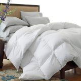 Factory Directly Sale Competitive Price Duck Down Duvet