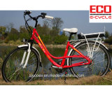 [ليثيوم بتّري] ومدينة درّاجة من درّاجة كهربائيّة
