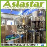 Kundenspezifische PLC-Steuerautomatische Wasser-Füllmaschine