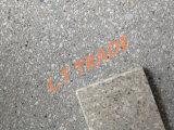 Anunció la superficie pulida con chorro de arena, antirresbaladiza, azulejos del terrazo para la pavimentación pública