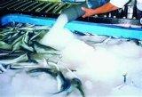 Flüssige Eis-Maschine für Fischerei