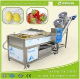 Machine automatique de lavage et séchage de poires et pommes à fruits automatiques industrielles