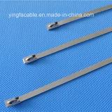 Naakte Roestvrije Band 4.6 X 200mm van Kabel 201 het Sluiten van de Bal