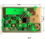 Оборудование 20130910-003-Wu-1-1 спортивной площадки темы джунглей занятности Cheer крытое