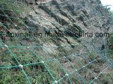 Загородка сетки PVC Coated Sns Rockfall