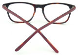 OA17886 de nieuwe Optische Glazen van het Frame van de Acetaat van de Kwaliteit van het Ontwerp Uiterst dunne