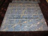 Azulejo de suelo lleno natural del mármol de la carrocería del material de construcción