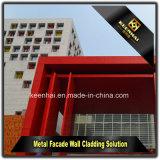 Comitato moderno di alluminio perforato della facciata della costruzione della lamiera sottile