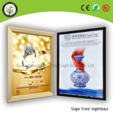 Casella chiara acrilica accettata OEM eccellente di qualità LED