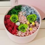 Cadre acrylique de fleur de Rose de fleur en plastique claire transparente de qualité