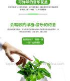 Горячий продавая Flowerpot нот касания беспроволочного диктора Bluetooth франтовской с светом СИД