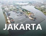 Livraison de Qingdao, Chine à Jakarta Utc1, Indonésie