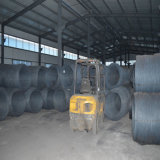 Bille d'acier au chrome de l'usine AISI52100 G40 avec de bonne qualité