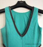 Платье повелительниц шикарное при шкафута застежки -молнии задняя часть дальше, одевая