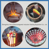 Aftersale assiste la macchina termica di induzione per i generi di metalli
