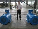 Motor de inducción Squirrel-Cage asíncrono trifásico eléctrico de los motores de inducción
