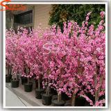 가정 훈장 4f 인공적인 벚꽃 나무