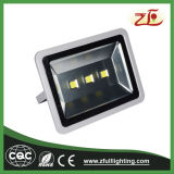 Indicatore luminoso di inondazione semplice di stile LED di alto potere IP67 200W