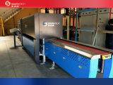 평면 유리 세라믹 롤러 기계 (TPG2003)를 통과하는 Southtech