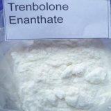 筋肉成長のための未加工粉Parabolan/Trenbolone Enanthate
