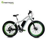 人のための雪1000W山の脂肪質のタイヤの電気バイク