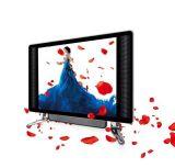 19 pouces de double affichage à cristaux liquides DEL TV en verre