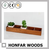 Vintage Wooden Storage Box for Plants
