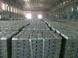 Zinn-Barren 99.99% mit ausgezeichneter Qualität