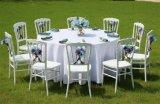 Cadeira do banquete/cadeira de Napoleon/cadeira do casamento