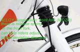 36V 리튬 건전지 250W 전기 자전거 700c*23c (BN7010)