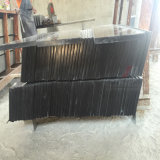 Absolute Black Granite Mongolia Black pour carreaux et dalles