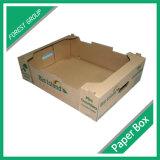 Ecofriendly 물결 모양 식물성 상자 도매