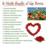 Extracto de Berry Goji para Alimentos e Bebidas