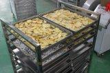 Secadora del aire caliente de la fruta y verdura del alimento de la cebolla del ñame automático industrial del jengibre