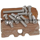 Edelstahl-Befestigungsteil-Hexagon-Kontaktbuchse-dünner Hauptkopfschrauben-Lieferant von China ASME/ANSI B 18.3