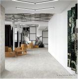 床および壁(DN6702)のための最も新しいマットの無作法な磁器のタイル600*600mm